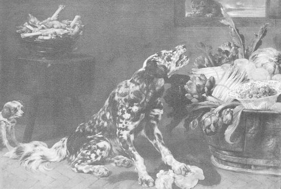 картина <Собака в кухне> СНЕЙДЕРС, ФРАНС ( SHYDERS, FRANS )