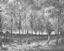 картина <Аллея тополей близ Нюэнена осенью> ВИНСЕНТ ВАН ГОГ