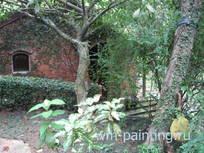 Боковой фасад здания в окружении тропической растительности.
