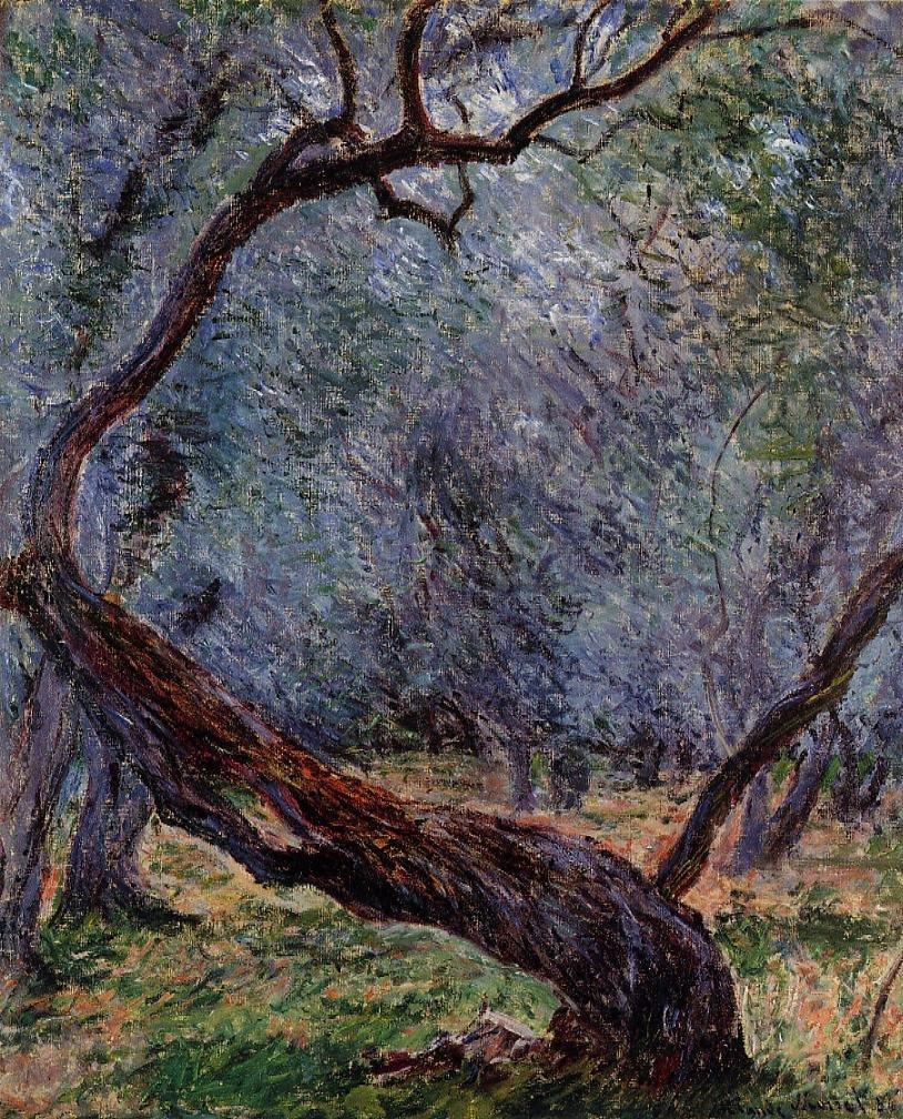 пейзаж Штудия оливковых деревьев:: Клод Моне, описание картины - Моне Клод (Claude Monet) фото