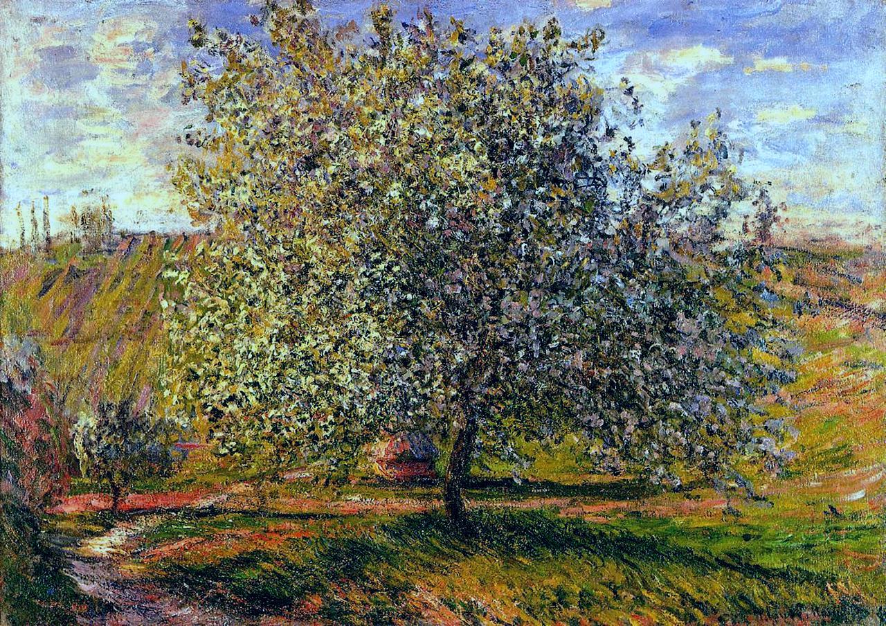 пейзаж < Дерево в цвету недалеко от Витёя >:: Клод Моне, описание картины - Claude Monet фото