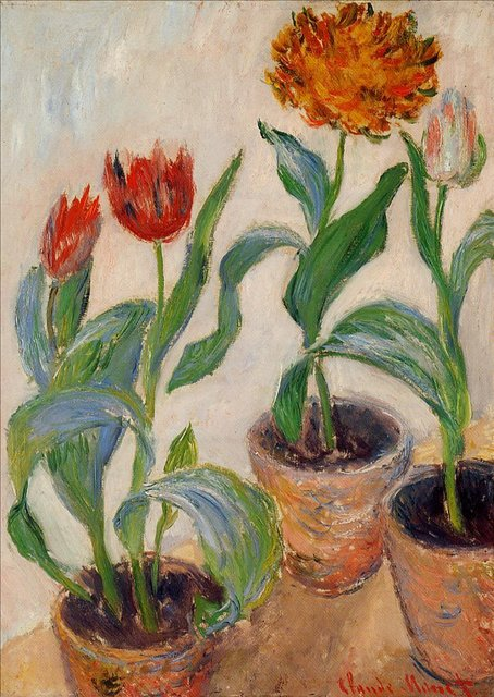 цветы < Три горшка с тюльпанами >:: Клод Моне, описание картины - Claude Monet фото
