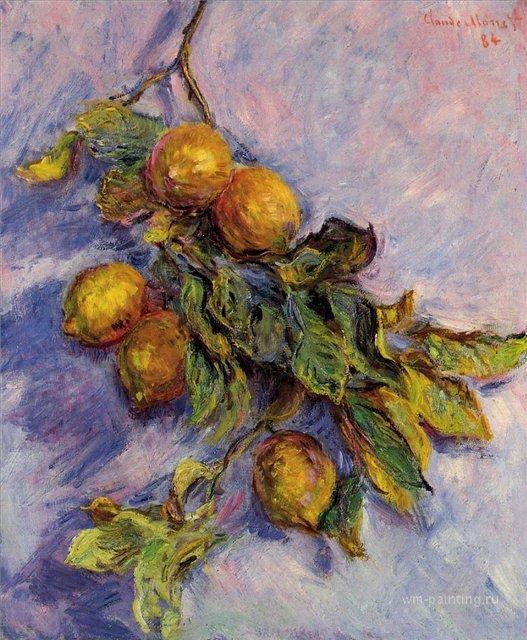 натюрморт Ветка лимонов :: Клод Моне, описание картины - Claude Monet фото