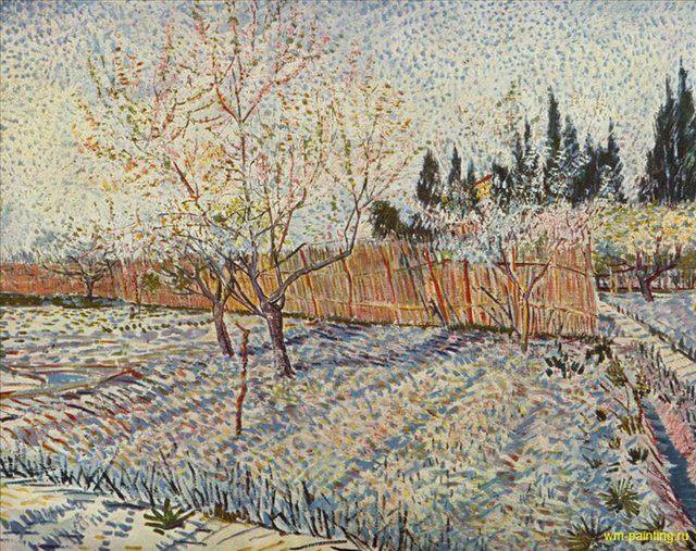 Плодовый сад и кипарисы :: - Van Gogh (Ван Гог) фото