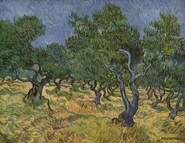 Оливковая роща :: Винсент Виллем Ван Гог - Van Gogh (Ван Гог) фото