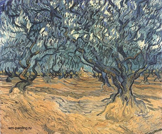 картина Оливковые деревья :: Винсент Виллем Ван Гог - Van Gogh фото
