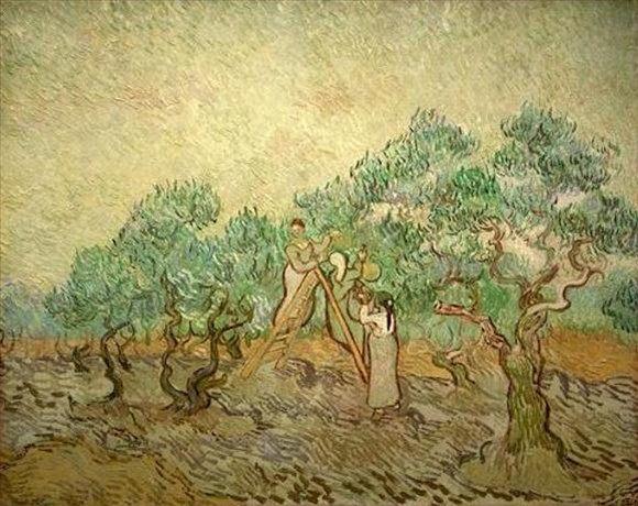 картина Сбор оливок :: Ван Гог, плюс статья про подарки - Van Gogh фото