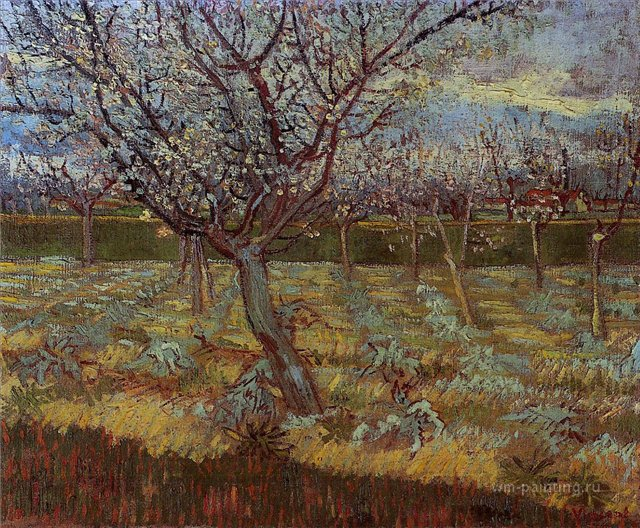 картина Цветущие абрикосовые деревья [ картина - пейзаж ] :: Ван Гог, описание картины, плюс статья про подарки, доставку и т.п. - Van Gogh (Ван Гог) фото