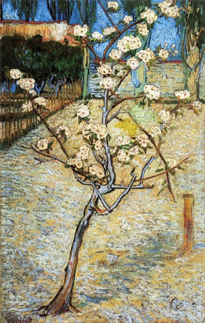 Груша в цвету [ картина - пейзаж ] :: Ван Гог, описание картины - Van Gogh фото