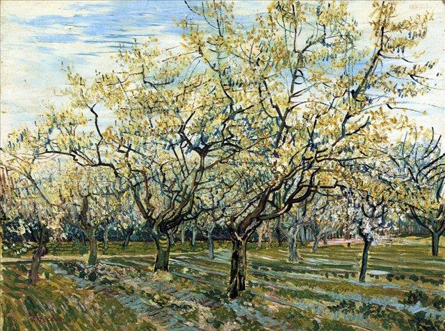 пейзаж Белый фруктовый сад :: Ван Гог, описание картины - Van Gogh фото