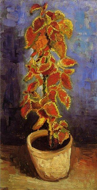 Растение колеус в цветочном горшке [ картина - цветы ] :: Ван Гог, описание картины - Van Gogh (Ван Гог) фото