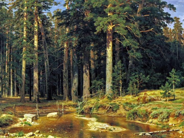 Корабельный лес :: художник Шишкин Иван Иванович - Ivan Shishkin фото
