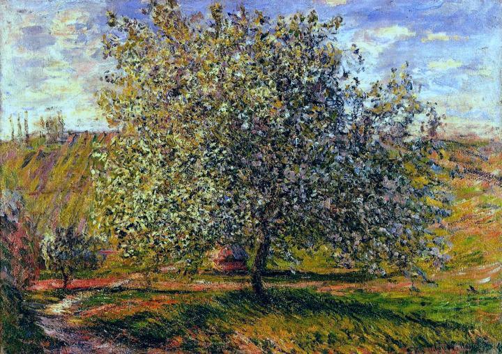 пейзаж Дерево в цвету недалеко от Витёя :: Клод Моне, описание картины - Claude Monet фото