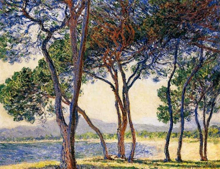 пейзаж Деревья на берегу моря в Антибе :: Клод Моне, описание картины - Claude Monet фото