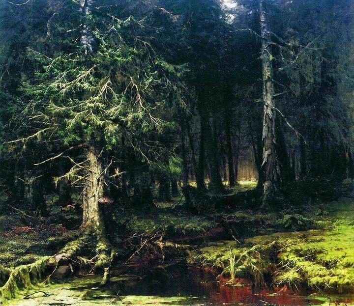 Девственный лес : Клевер Ю.Ю., пейзаж - Klever Yuliy фото