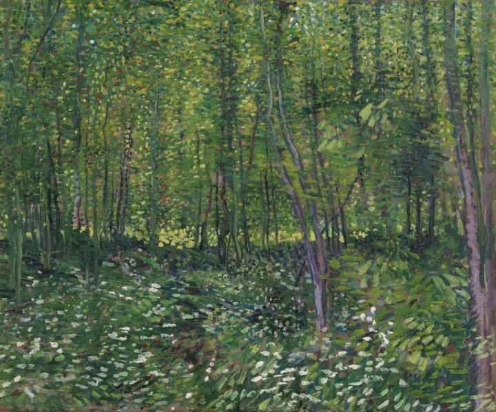Деревья и подлесок :: Ван Гог - Van Gogh фото