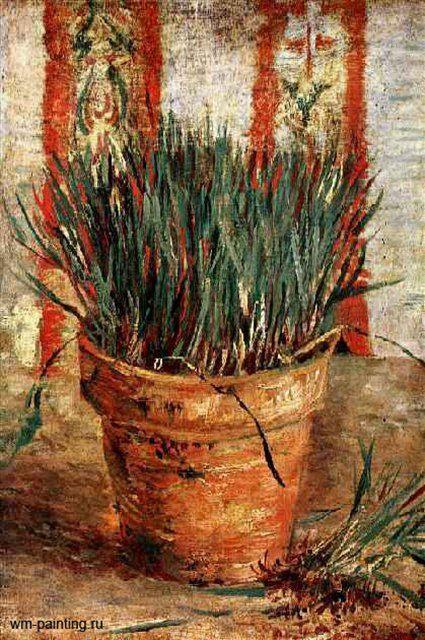 цветочный горшок с ростками чеснока :: Ван Гог - Van Gogh фото