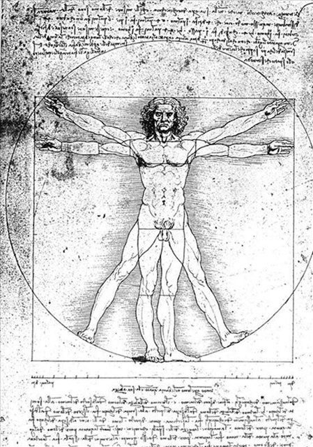 Человек по Витрувию :: Леонардо да Винчи   Леонардо да Винчи - da Vinci Leonardo фото