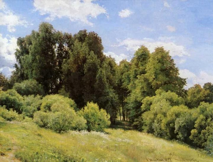 Лесная поляна (Полянка) :: Шишкин И.И. - Ivan Shishkin фото