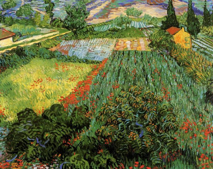 пейзаж Маковое поле :: Ван Гог, описание картины, плюс статья про подарки - Van Gogh фото