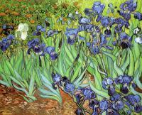 Van Gogh - Ирисы