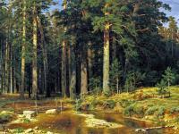 Ivan Shishkin - Корабельный лес