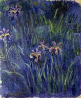 �����  ����� :: ���� ���� ( Claude Monet )