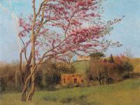Пейзаж ( пейзажная живопись ) - Пейзаж: Цветущий красный Миндаль [набросок]