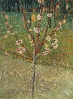 Van Gogh - цветущее миндальное дерево