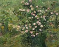 Van Gogh - Розы