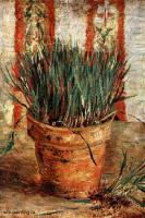 цветочный горшок с ростками чеснока :: Ван Гог