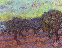 Van Gogh - Оливковая роща II