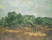 Van Gogh - Оливковая роща,  светло-голубое небо