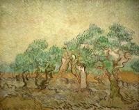 Van Gogh - Сбор оливок III