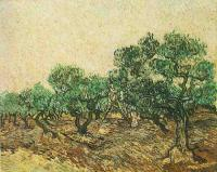 Van Gogh - Сбор оливок