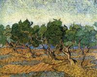 Van Gogh - Оливковая роща  IV