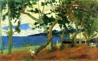 Paul Gauguin - Морское побережье