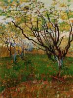 Van Gogh - Цветущий сад