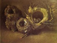 Van Gogh - Натюрморт с тремя птичьими гнёздами